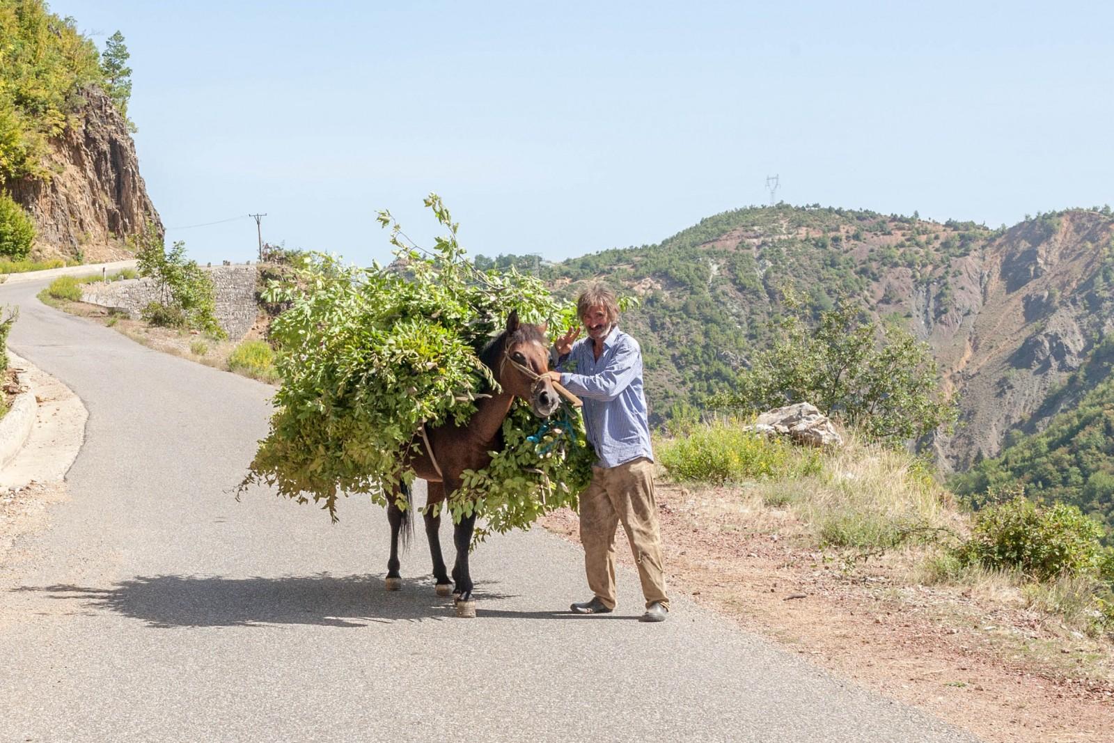 Chlapík s koněm